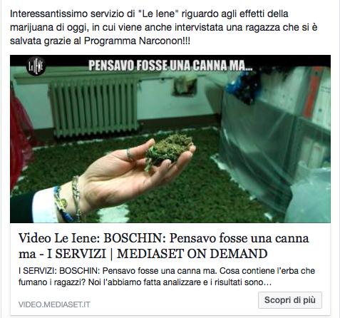 """Servizio """"Le Iene"""" su canne e marijuana con intervista di una ragazza che ha fatto il programma Narconon"""